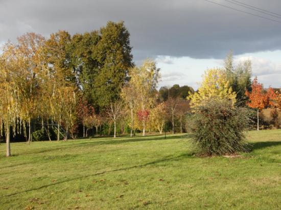 Arboretum Automne 11.2016